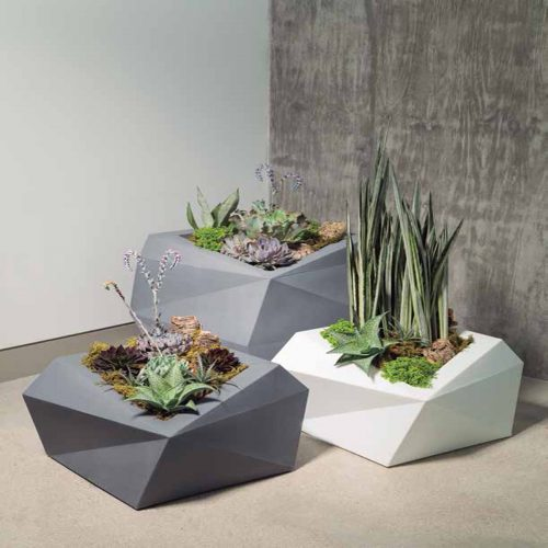 succulents for public spaces