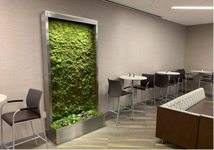 Moss Wall for Malls
